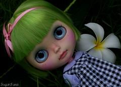 SugarLuna Custom Blythe #107