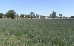 Lot 23 Bleechmore Road, Parkes NSW