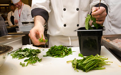 """Chef Conference 2014, Monday 6-16 K.Toffling • <a style=""""font-size:0.8em;"""" href=""""https://www.flickr.com/photos/67621630@N04/14489935885/"""" target=""""_blank"""">View on Flickr</a>"""