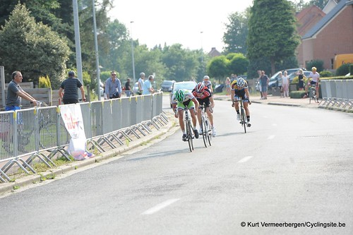Geel Oosterlo  (341)