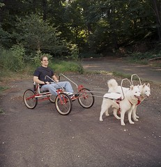 """Czar and Hudson Ready To Roll With The WooFDriver • <a style=""""font-size:0.8em;"""" href=""""http://www.flickr.com/photos/96196263@N07/14574440673/"""" target=""""_blank"""">View on Flickr</a>"""