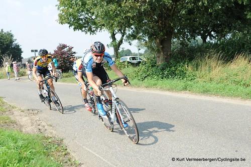 Geel Oosterlo  (83)