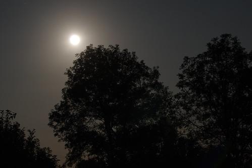 Moonlight - Nuit de la super Lune
