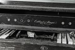_SLN1056 (zamon69) Tags: urban house detail abandoned se skåne sweden organ hus orgel eslöv detalj övergivet