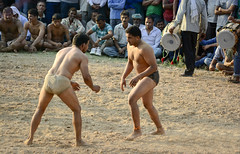 Kushti | Indian wrestling ([s e l v i n]) Tags: india men sports fight village muscle wrestling battle fighting punjab combat wrestle indianmen kushti indianwrestling pehlwan selvin indiankushtiwrestling
