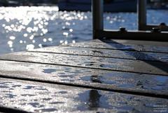 Wet (laura cooper --- new england) Tags: ocean morning light shadow summer reflection water swim harbor waterdrop bokeh