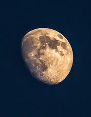 Moon (TheAkkaas) Tags: light sky sun moon nature beauty true night circle truth dubai glow shine power bright planet moonshine mydubai