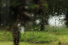 (Jelena1) Tags: window water glass rain canon raindrops kap voda kiša prozor staklo raindropsonwindow kapljica canon600d eos600d canoneos600d kišnakap kapljicavode kišanaprozoru