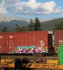IDES (YardJock) Tags: railroad train graffiti railway spraypaint boxcar freighttrain rollingstock benching paintedsteel benchreport