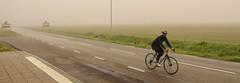 A biker on a foggy morning (frankmh) Tags: fog cyclists sweden bikers scania hittarp