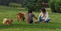 Peace-disturbed_DSC8030 (Mel Gray) Tags: park pets dogs animals sofia bulgaria