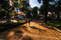 Together (Black Baron93) Tags: life park trees light shadow two people sun sunlight color reflection tree walking happy couple asia southeastasia couples streetlife lovers vietnam together saigon twopeople sunray eastasia lifearound