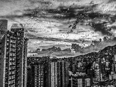 Rainy Day (gauche_photo) Tags: brazil bw minasgerais water rain brasil drops phone chuva cell samsung pb mg smartphone galaxy belohorizonte waterdrops bh