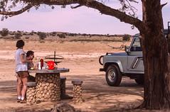 Une antilope s'invite au Pique-nique (trekmaniac-is-back) Tags: 4x4 1998 animaux laurent laurence diapo afriquedusud tweerivieren gemsbokkalahari