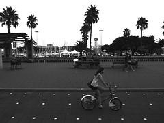 R0010906 (adam sharp) Tags: barcelona city urban blackandwhite bw espaa contrast photography seaside spain europe barca cyclist waterfront highcontrast playa catalonia catalunya gr seafront iv ricoh catalua catalonha