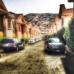 -                                        دنت أيامُ رمضان       طهّر قلوبنا يا اللہ ونق       سرائرنا و بلغنا جمال               لحظاتہ . (Willey 3K) Tags: square lofi squareformat iphoneography instagramapp uploaded:by=instagram
