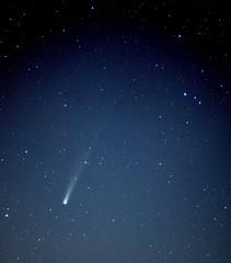Comet ISON on Morning 19 Nov 13 (northern_nights) Tags: comet cometison nikond7000 nikon180mmf28 santafe newmexico astrometrydotnet:id=nova1956997 astrometrydotnet:status=solved