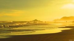 Itanhaém, SP (sarabatera) Tags: beach sunset sun paradise walking caminhada freedom liberdade paraíso céu sky landscape reflections yellow amarelo sãopaulo praiasdesãopaulo sp canon canonpowershotsx50hs people