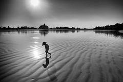 Beach Reflection (-Harm-) Tags: blackandwhite bw sun reflection beach water boston sand silverefexpro2