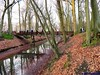 "12-01-2013 Den Haag 25 km JPG (09) • <a style=""font-size:0.8em;"" href=""http://www.flickr.com/photos/118469228@N03/14521845136/"" target=""_blank"">View on Flickr</a>"