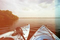 Heaven. (erikaflugge) Tags: film water 35mm heaven kayak florida wildlife horizon 35mmfilm kayaking sanibel sanibelisland ding tarponbay kodakportra400 kodakportra dingdarlingnationalwildliferefuge 1740mmf4l 35mmcolorfilm canoneos1n june2014