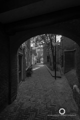Passage (AlvinAarnoutsePhotography) Tags: city blackandwhite bw holland netherlands monochrome beautiful nikon nederland wideangle dordrecht fullframe fx stad zuidholland d610 groothoek lightroom5 samyangrokinon samyang14mmf28ae d600d610bw