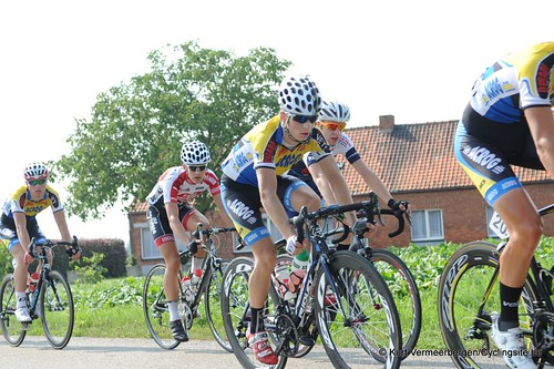 Geel Oosterlo  (170)