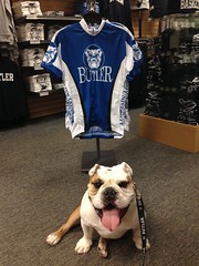 "We interrupt #TurkeyLegTuesday to bring u this important message. #Cycling jerseys now avail. at @butleru Bookstore! • <a style=""font-size:0.8em;"" href=""http://www.flickr.com/photos/73758397@N07/14776901654/"" target=""_blank"">View on Flickr</a>"