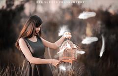 Ntk_20140807-47 (Ntk Nguyn) Tags: ocean city bird vintage studio model chi ntk ho minh nguyn