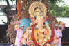 Aala re aala - Lalbaghca Raja ([s e l v i n]) Tags: india elephant ganesha god ganesh idol bombay elephantgod mumbai hinduism deity raja visarjan ganpati lordganesh lalbaug hindugod ganeshotsav lalbaugcharaja ganeshvisarjan ganeshfestival hindudeity chinchpokli ©selvin lalbaugcharajavisarjan