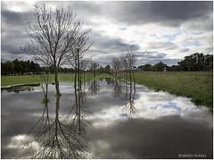 (Roberto Suarez DLG) Tags: sky reflection clouds landscape agua path paisaje olympus cielo nubes reflejo sendero e5 delagarma