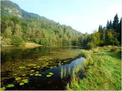 Polney Loch (eric robb niven) Tags: autumn landscape cycling scotland perthshire loch dunkeld polney ericrobbniven lumixfz72