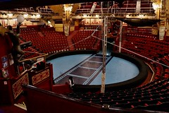 DSC09259 (Shadow Action) Tags: tower june circus blackpool 2014