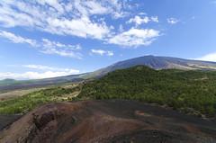 Etna Ovest (roberto_86) Tags: italy panorama de volcano italia 10 sigma sicily monte 20 fiore rosso etna sicilia vulcano capre adrano d7000