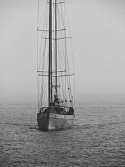 Elida V - Black and White (fstop186) Tags: sea white mist black water blackwhite sweden olympus v solent rolling elida ketch megayacht em1 sailingforjesus lumixgvario100300f4056 elidav