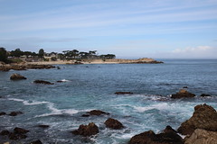 IMG_2958 (mudsharkalex) Tags: california pacificgrove pacificgroveca