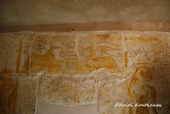 Anubis protector of tombs (konde) Tags: mayaandmerit tomb 18thdynasty mayaandmeryt newkingdom saqqara ancient anubis wadjet eyes hieroglyphs relief deities nut goddess