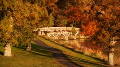 Stone Bridge on the Rye Water in Autumn (Barry O Carroll Photography) Tags: stonebridge bridge river ryewater rye trees autumn fall path kildare maynooth ireland landscape nature outdoor