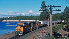 Z train at Grass Lake (C.P. Kirkie) Tags: trains railroads unionpacific up cnw gedash9 ge generalelectric upshastaroute grasslake california northerncalifornia intermodal cascaderange