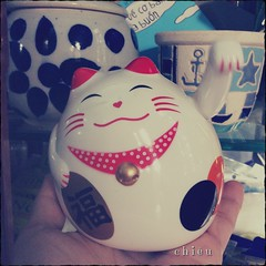 Love-calling cat ❤️ (C h i ê u) Tags: luckycharm cat neko valentine
