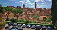 tuscany (Rex Montalban Photography) Tags: italy europe tuscany siena notanhdrimage rexmontalbanphotography