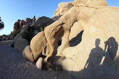 w1275 (polaroid-girl) Tags: selfportrait nationalpark shadows desert joshuatree fisheye mojave riverbed rockformations joshuatreenationalpark jtnp