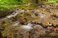 Parfrey's Glen (E_Bass) Tags: nature wisconsin hiking glen parfley