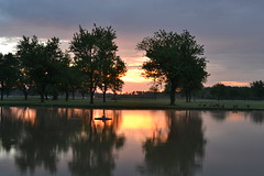 Morning reflections (fitzbike1) Tags: park trees summer sky nature water silhouette sunrise dawn weeds nikon cloudy lockport niagaracounty