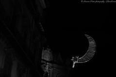 390 esimo Festino di Santa Rosalia 2014 - 2 (liberoilverso) Tags: blackandwhite canon blackwhite sicily palermo can