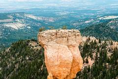 Bryce Canyon, Utah - Agua Canyon (MikePScott) Tags: camera trees usa lens utah rocks unitedstates amphitheatre canyon cliffs hoodoo kanecounty topography fairychimney brycecanyonnationalpark tentrock aguacanyon earthpyramid nikond800 nikon28300mmf3556 hunterhoodoo
