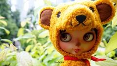 Honey Bear!!!