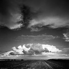 Cloudy High Sky III (M a r c O t t o l i n i) Tags: sky bw 6x6 film monochrome clouds zeiss square switzerland suisse nb ciel mf 50 nuages ilford carré planar hasselblad500cm panf50 vuescan epsonv700 epsonperfectionv700 planar2880mm marcottolini filtrepolarisantlinéairelee leelinearpolarizingfilter