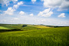 The Southdowns (GarethThomasJones) Tags: blue windows sky green canon coast nationalpark brighton day cloudy south southern national efs arundel southdowns hils canonefs1785mmf456isusm canon1785mm canon60d gareththomasjones