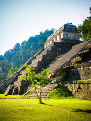 Palenque, Maya city in Mexico (Zeeyolq Photography) Tags: old city building tree green grass rock architecture america mexico site ruins maya landmark mexican jungle palenque mexique visitors archaeological chiapas touristplace
